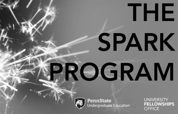 First-year students invited to apply to Spark Program